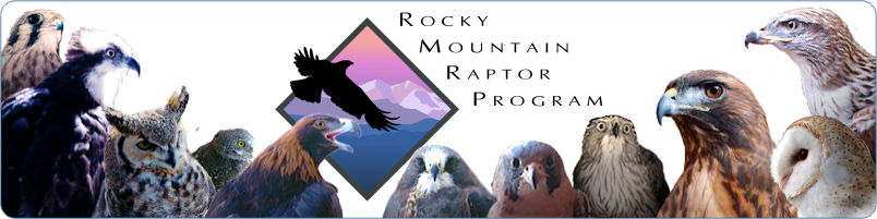 Rocky Mountain Raptor Program